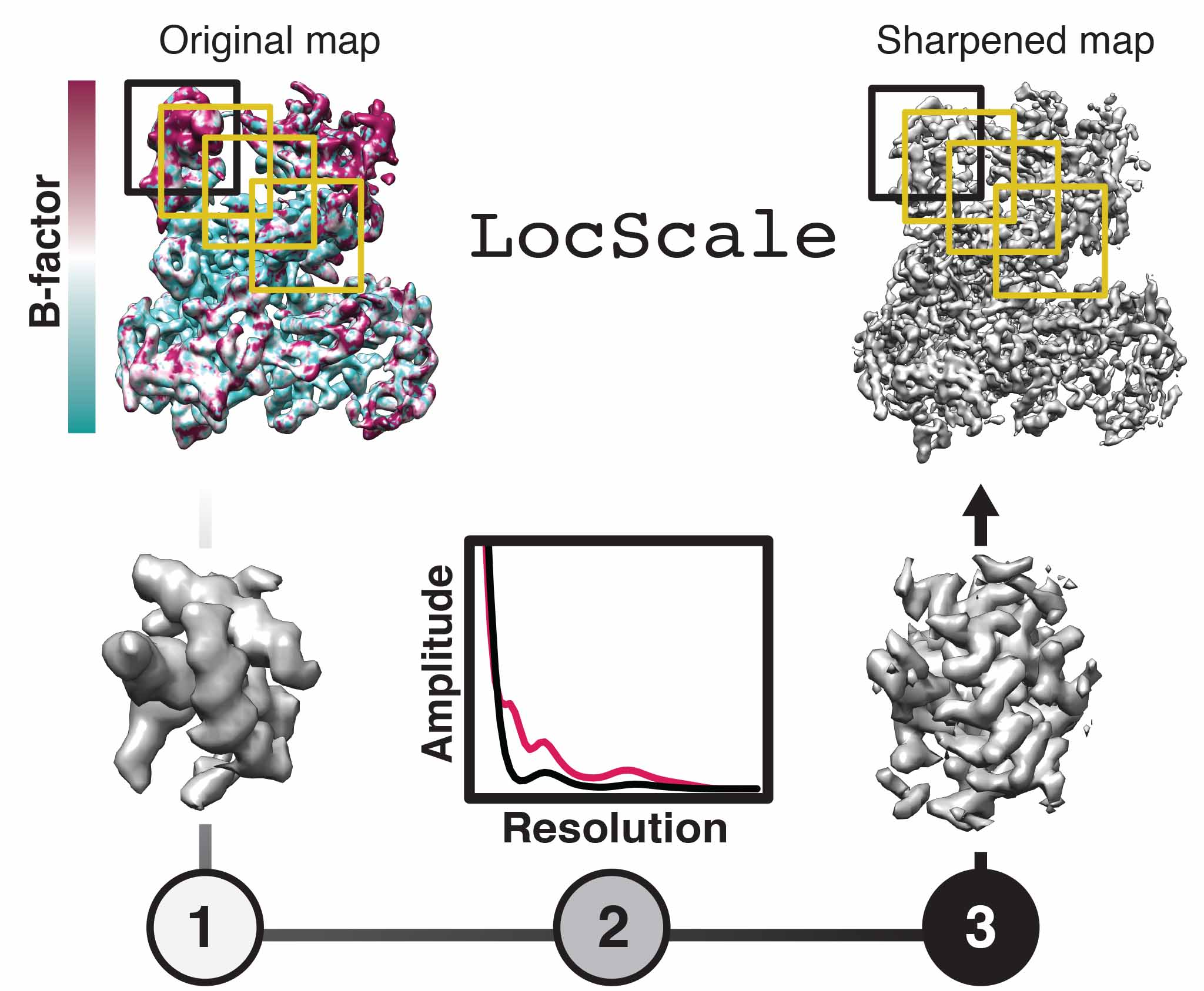 Schematic illustration of the LocScale map sharpening